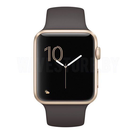 Умные часы Apple Watch Series 2 42mm Gold with Cocoa Sport Band (MNPN2)